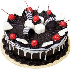 Chocolate Web Cake