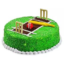 Cricket Pitch Fondant cake