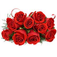 gorgeous Reds