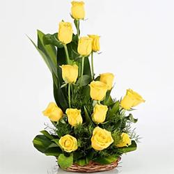 Sunshine Yellow Roses